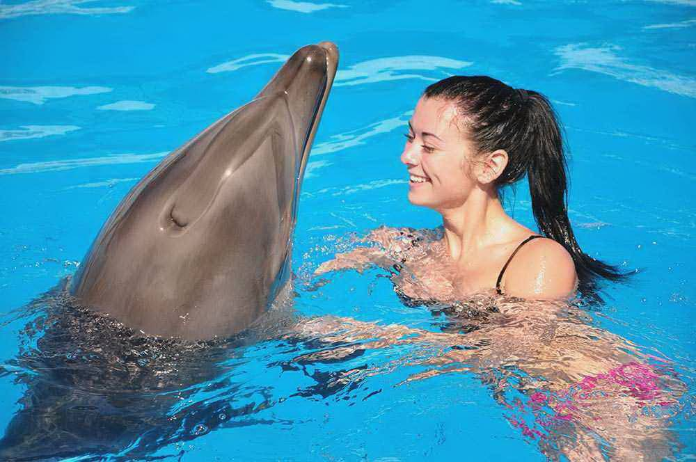 Нажмите для увеличения 1_Swimming_with_dolphins_Sharm_main_photo.jpg